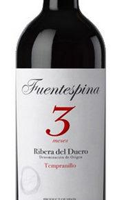 Fuentespina Roble 3-0