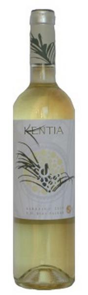 Kentia-0